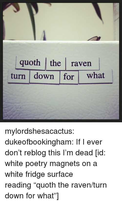 """the raven: quoth the raven  turn down for what mylordshesacactus: dukeofbookingham: If I ever don't reblog this I'm dead [id: white poetry magnets on a white fridge surface reading""""quoth the raven/turn down for what""""]"""