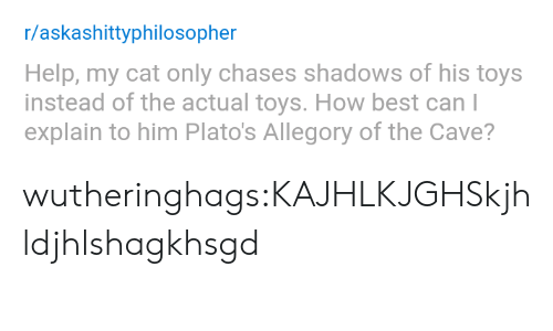 the cave: r/askashittyphilosopher  Help, my cat only chases shadows of his toys  instead of the actual toys. How best can l  explain to him Plato's Allegory of the Cave? wutheringhags:KAJHLKJGHSkjhldjhlshagkhsgd