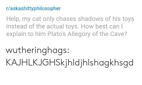 the cave: r/askashittyphilosopher  Help, my cat only chases shadows of his toys  instead of the actual toys. How best can l  explain to him Plato's Allegory of the Cave? wutheringhags: KAJHLKJGHSkjhldjhlshagkhsgd