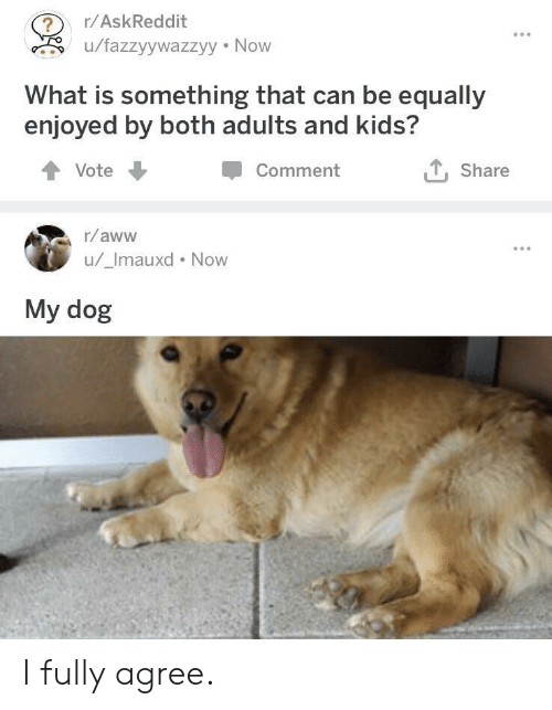 now what: r/AskReddit  u/fazzyywazzyy Now  What is something that can be equally  enjoyed by both adults and kids?  Comment  Share  Vote  r/aww  u/_Imauxd Now  My dog I fully agree.
