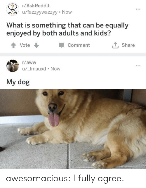 now what: r/AskReddit  u/fazzyywazzyy Now  What is something that can be equally  enjoyed by both adults and kids?  Comment  Share  Vote  r/aww  u/_Imauxd Now  My dog awesomacious:  I fully agree.