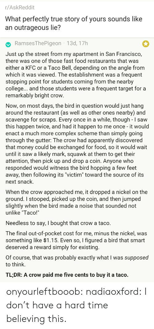 "kfc: r/AskReddit  What perfectly true story of yours sounds like  an outrageous lie?   RamsesThePigeon 13d, 17h  Just up the street from my apartment in San Francisco,  there was one of those fast food restaurants that was  either a KFC or a Taco Bell, depending on the angle from  which it was viewed. The establishment was a frequent  stopping point for students coming from the nearby  college... and those students were a frequent target for a  remarkably bright crow  Now, on most days, the bird in question would just hang  around the restaurant (as well as other ones nearby) and  scavenge for scraps. Every once in a while, though - I saw  this happen twice, and had it happen to me once - it would  enact a much more complex scheme than simply going  through the gutter: The crow had apparently discovered  that money could be exchanged for food, so it would wait  until it saw a likely mark, squawk at them to get their  attention, then pick up and drop a coin. Anyone who  responded would witness the bird hopping a few feet  away, then following its ""victim"" toward the source of its  next snack.  When the crow approached me, it dropped a nickel on the  ground. I stooped, picked up the coin, and then jumped  slightly when the bird made a noise that sounded not  unlike ""Taco!'  Needless to say, I bought that crow a taco.  The final out-of-pocket cost for me, minus the nickel, was  something like >l.T5. Even so, I figured a bird that smart  deserved a reward simply for existing  Of course, that was probably exactly what I was supposed  to think.  TL;DR: A crow paid me five cents to buy it a taco. onyourleftbooob:  nadiaoxford: I don't have a hard time believing this."