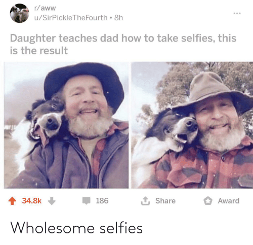 selfies: r/aww  u/SirPickleTheFourth 8h  Daughter teaches dad how to take selfies, this  is the result  1 Share  1 34.8k  186  Award Wholesome selfies