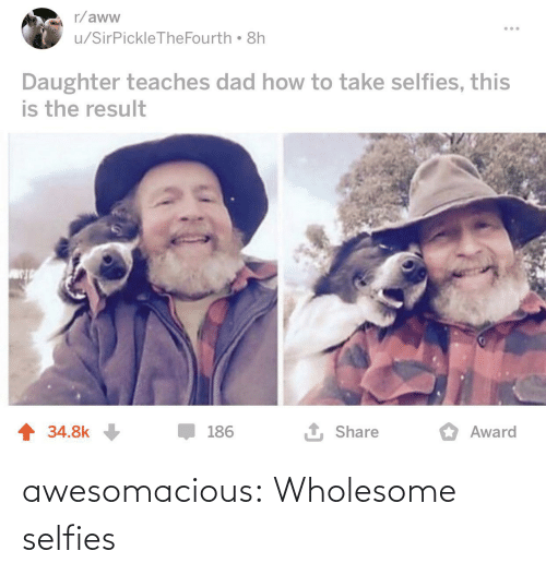 award: r/aww  u/SirPickleTheFourth 8h  Daughter teaches dad how to take selfies, this  is the result  1 Share  1 34.8k  186  Award awesomacious:  Wholesome selfies