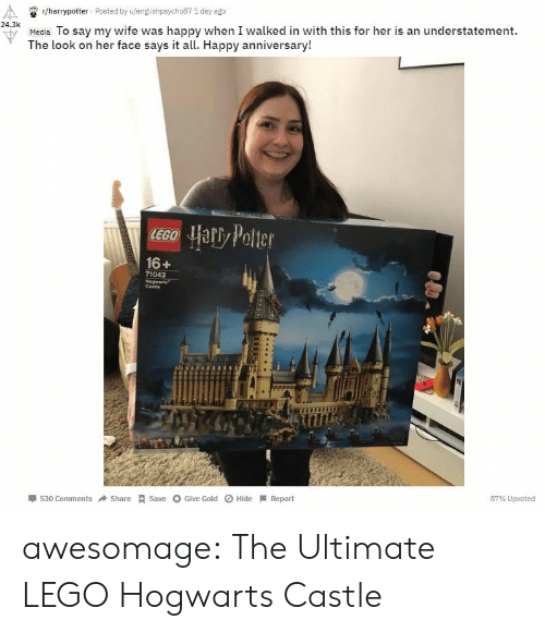 hogwarts: r/harrypotter Posted by u/englishpsycho87 1 day ago  24.3k  u Media To say my wife was happy when I walked in with this for her is an understatement.  The look on her face says it all. Happy anniversary!  16+  71043  Cestie  530 ComShareSave Give Gold Hide Report  87% Upvoted awesomage:  The Ultimate LEGO Hogwarts Castle