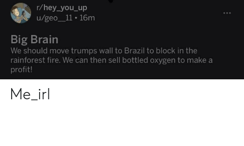 Trumps Wall: r/hey_you_up  u/geo_11 16m  Big Brain  We should move trumps wall to Brazil to block in the  rainforest fire. We can then sell bottled oxygen to make a  profit! Me_irl