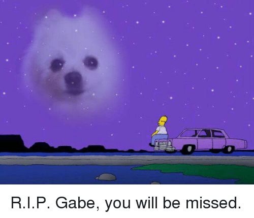 Gabe: R.I.P. Gabe, you will be missed.