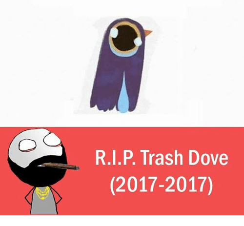 Trash Dove: R.I.P. Trash Dove  (2017-2017)