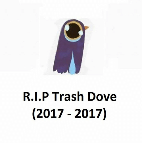 Trash Dove: R.I.P Trash Dove  (2017 2017)
