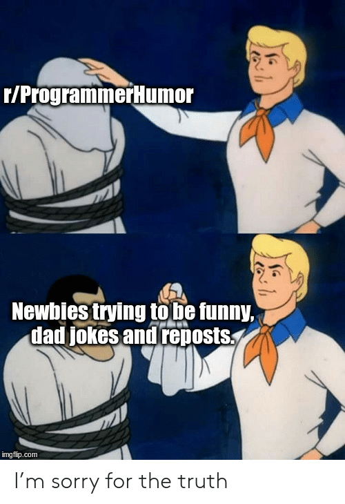 Jokes And: r/ProgrammerHumor  Newbies trying to be funny,  dad jokes and reposts  imgflip.com I'm sorry for the truth