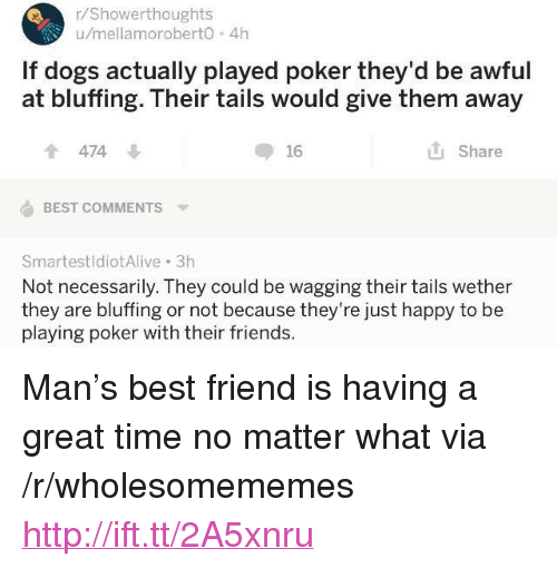 """Best Friend, Dogs, and Friends: r/Showerthoughts  u/mellamoroberto 4h  If dogs actually played poker they'd be awful  at bluffing. Their tails would give them away  474  16  Share  BEST COMMENTS  SmartestldiotAlive 3h  Not necessarily. They could be wagging their tails wether  they are bluffing or not because they're just happy to be  playing poker with their friends. <p>Man's best friend is having a great time no matter what via /r/wholesomememes <a href=""""http://ift.tt/2A5xnru"""">http://ift.tt/2A5xnru</a></p>"""