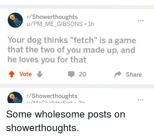 "Game, Wholesome, and A Game: r/Showerthoughts  u/PM_ME_GIBSONS 1h  e98  Your dog thinks ""fetch"" is a game  that the two of you made up, and  he loves you for that  20  Share  r/Showerthoughts <p>Some wholesome posts on showerthoughts.</p>"