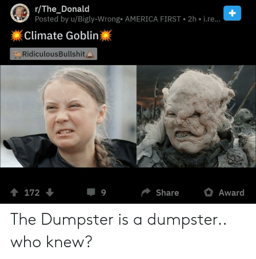Bigly: r/The_Donald  Posted by u/Bigly-Wrong. AMERICA FIRST 2h i.re...  Climate Goblin  RidiculousBullshit  Share  172  9  Award The Dumpster is a dumpster.. who knew?