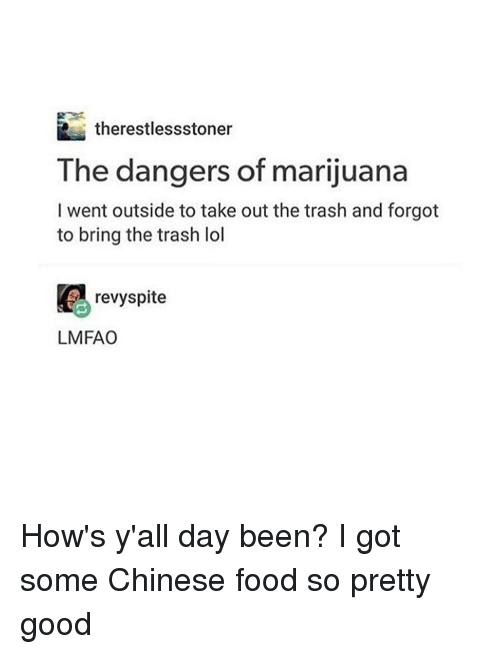 taking out the trash: R therestlessstoner  The dangers of marijuana  I went outside to take out the trash and forgot  to bring the trash lol  revyspite  LMFAO How's y'all day been? I got some Chinese food so pretty good