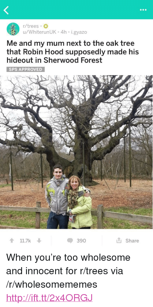 "Http, Tree, and Trees: r/trees  u/WhiterunUK 4h i.gyazo  Me and my mum next to the oak tree  that Robin Hood supposedly made his  hideout in Sherwood Forest  SPS APPROVED  t 11.7k  390  Share <p>When you're too wholesome and innocent for r/trees via /r/wholesomememes <a href=""http://ift.tt/2x4ORGJ"">http://ift.tt/2x4ORGJ</a></p>"