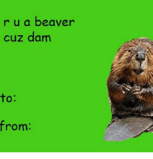 Valentines Day Cards Meme