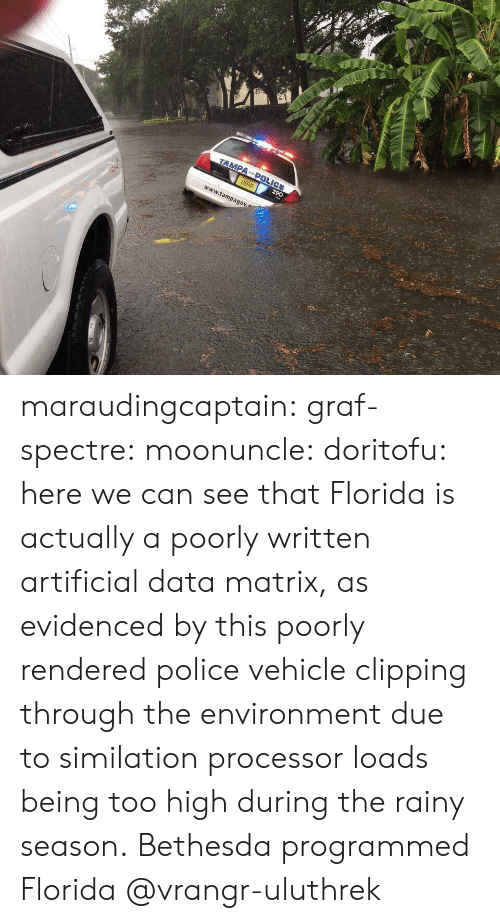 processor: r1  www.tampagov maraudingcaptain:  graf-spectre:  moonuncle:  doritofu: here we can see that Florida is actually a poorly written artificial data matrix, as evidenced by this poorly rendered police vehicle clipping through the environment due to similation processor loads being too high during the rainy season. Bethesda programmed Florida     @vrangr-uluthrek