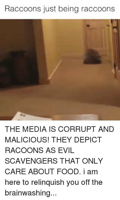 depict: Raccoons just being raccoons THE MEDIA IS CORRUPT AND MALICIOUS! THEY DEPICT RACOONS AS EVIL SCAVENGERS THAT ONLY CARE ABOUT FOOD. i am here to relinquish you off the brainwashing...
