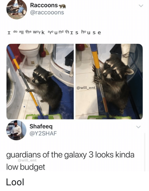 raccoons: Raccoons  @raccooons  I do all he work ar u nd thIs hou se  @will_ent  Shafeeq  @Y2SHAF  guardians of the galaxy 3 looks kinda  low budget  @will _ent Lool