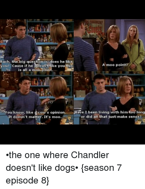The One Where Chandler Doesn T Like Dogs
