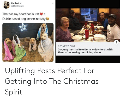 nativity: RachMcV  @Rachforde  That's it, my heart has burst V a  Dublin based dog kennel nativity  HKE  3 young men invite elderly widow to sit with  them after seeing her dining alone  CBSNEWS.COM Uplifting Posts Perfect For Getting Into The Christmas Spirit