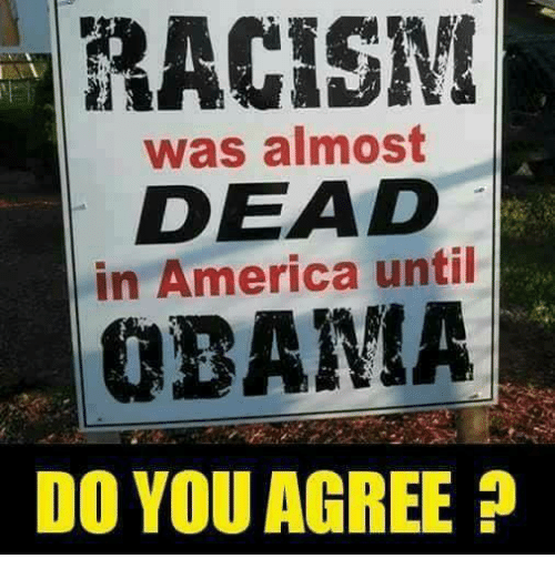 America, Memes, and Obama: RACISIN  was almost  DEAD  in America until  OBAMA  DO YOU AGREE