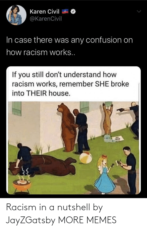 in a nutshell: Racism in a nutshell by JayZGatsby MORE MEMES