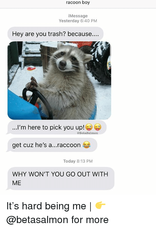 Memes, Trash, and Raccoon: racoon boy  iMessage  Yesterday 6:40 PNM  Hey are you trash? because...  ...I'm here to pick you up!  @BetaSalmon  get cuz he's a  raccoon  Today 8:13 PM  WHY WON'T YOU GO OUT WITH  ME It's hard being me | 👉 @betasalmon for more