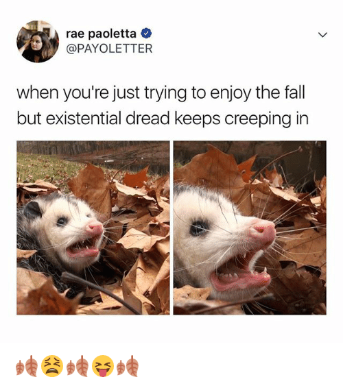 Fall, The Fall, and Relatable: rae paoletta  @PAYOLETTER  when you're just trying to enjoy the fall  but existential dread keeps creeping in 🍂😫🍂😝🍂