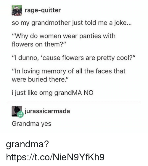 """Grandma, Memes, and Omg: rage-quitter  so my grandmother just told me a joke...  Why do women wear panties with  flowers on them?""""  """"I dunno, 'cause flowers are pretty cool?""""  """"In loving memory of all the faces that  were buried there.""""  i just like omg grandMA NO  jurassicarmada  Grandma yes grandma? https://t.co/NieN9YfKh9"""
