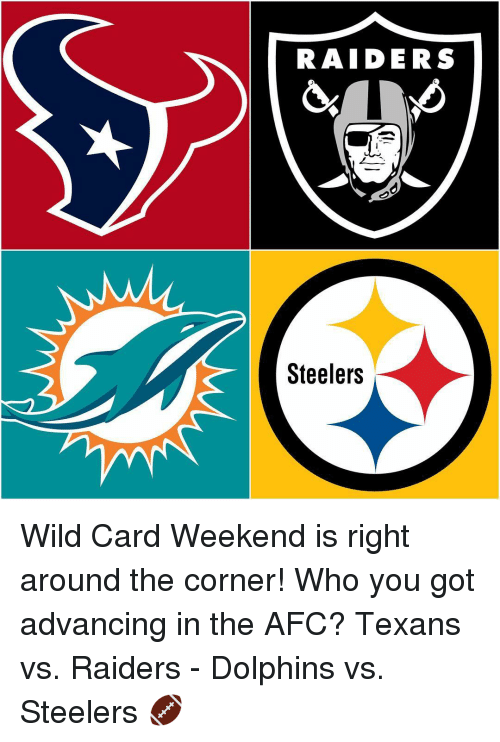 Memes, Dolphin, and Dolphins: RAIDERS  Steelers Wild Card Weekend is right around the corner! Who you got advancing in the AFC? Texans vs. Raiders - Dolphins vs. Steelers 🏈
