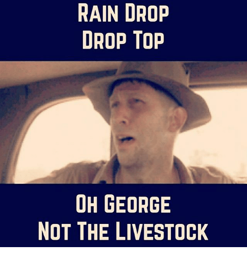 Rain Drop Drop Top: RAIN DROP  DROP TOP  OH GEORGE  NOT THE LIVESTOCK