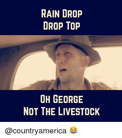 Rain Drop Drop Top: RAIN DROP  DROP Top  OH GEORGE  NOT THE LIVESTOCK @countryamerica 😂