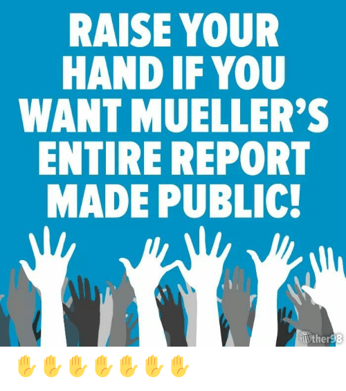 raise your hand if: RAISE YOUR  HAND IF YOU  WANT MUELLER'  ENTIRE REPORT  MADE PUBLIC  er ✋✋✋✋✋✋✋