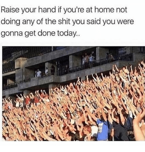 Memes, Shit, and Home: Raise your hand if you're at home not  doing any of the shit you said you were  gonna get done today..