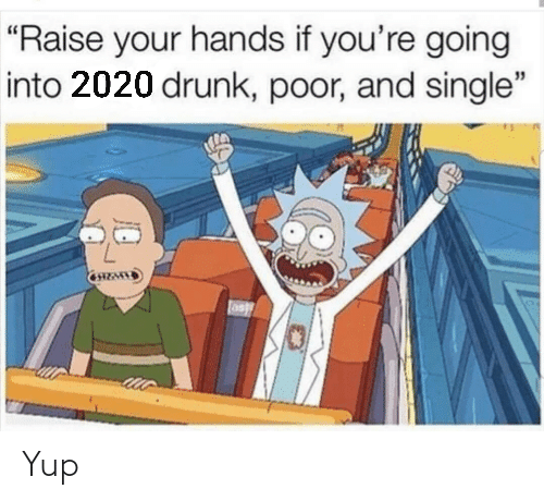"Your Hands: ""Raise your hands if you're going  into 2020 drunk, poor, and single"" Yup"