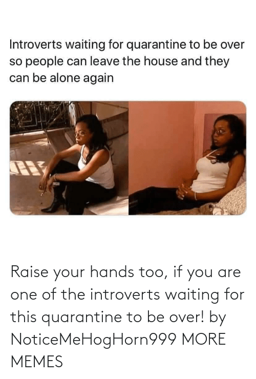 Your Hands: Raise your hands too, if you are one of the introverts waiting for this quarantine to be over! by NoticeMeHogHorn999 MORE MEMES