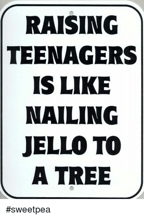 raising teenagers is like nailing jello to a tree sweetpea 23528011 🅱 25 best memes about raising teenagers raising teenagers memes