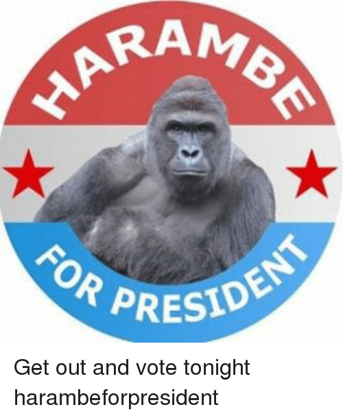 get-out-and-vote: RAM  OR PRESIDE Get out and vote tonight harambeforpresident