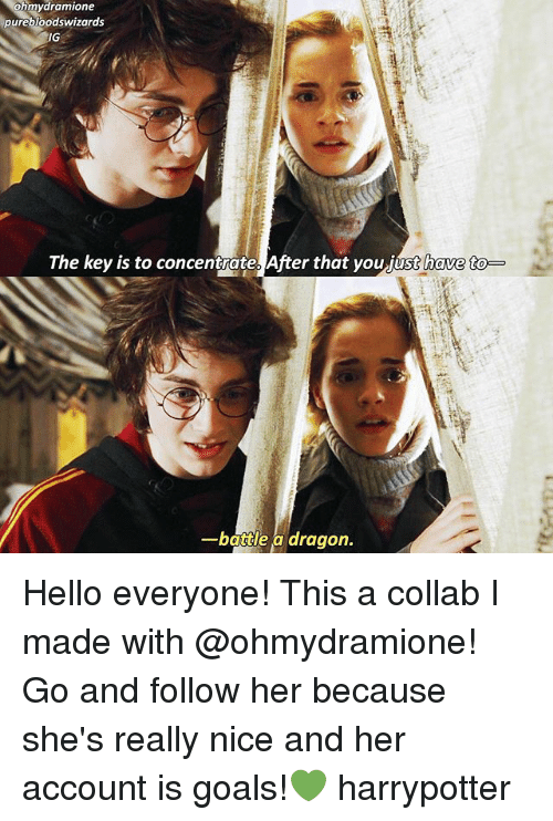 Bloods, Goals, and Hello: ramione  pure bloods wizards  JG  The key is to concentrate After that you have to  A dragon.  battle Hello everyone! This a collab I made with @ohmydramione! Go and follow her because she's really nice and her account is goals!💚 harrypotter