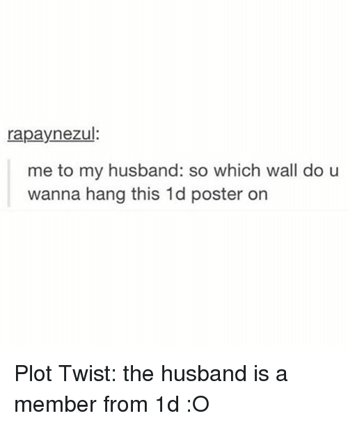 Girl Memes: rapaynezul  me to my husband: so which wall do u  wanna hang this 1d poster on Plot Twist: the husband is a member from 1d :O