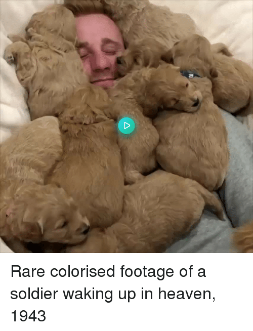 Colorised: Rare colorised footage of a soldier waking up in heaven, 1943