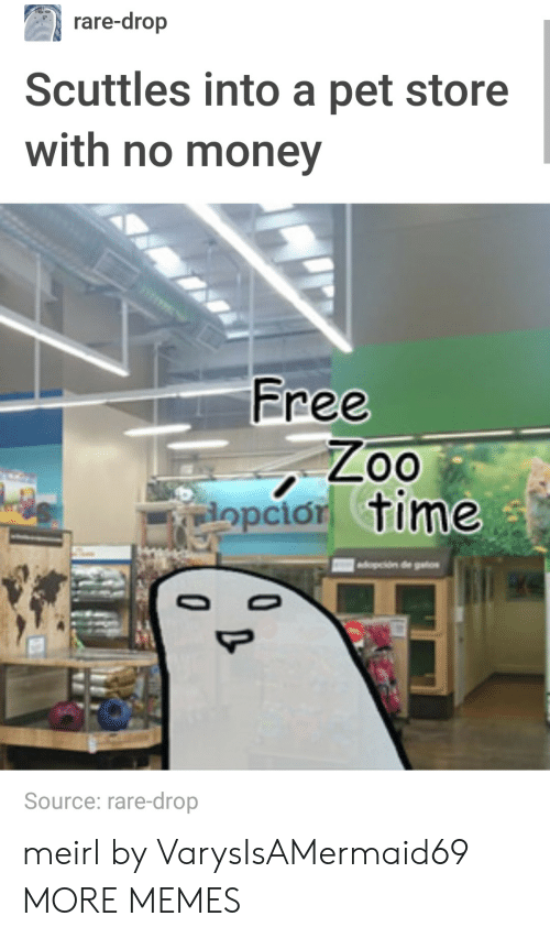 Pet Store: rare-drop  Scuttles into a pet store  with no money  Free  opcior time  Source: rare-drop meirl by VarysIsAMermaid69 MORE MEMES