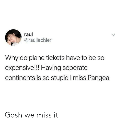 so stupid: raul  @raullechler  Why do plane tickets have to be So  expensive!!! Having seperate  continents is so stupid I miss Pangea Gosh we miss it