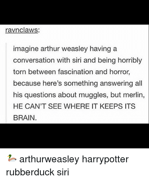 Arthur, Brains, and Memes: ravnclaws  imagine arthur weasley having a  conversation with siri and being horribly  torn between fascination and horror,  because here's something answering all  his questions about muggles, but merlin,  HE CAN'T SEE WHERE IT KEEPS ITS  BRAIN. 🦆 arthurweasley harrypotter rubberduck siri