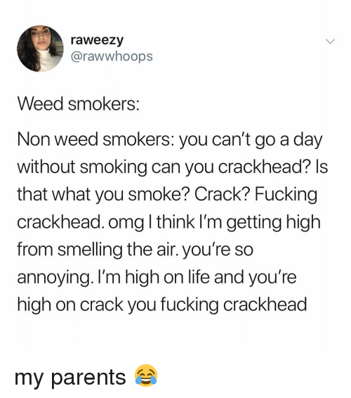 crackhead: raweezy  @rawwhoops  Weed smokers  Non weed smokers: you can't go a day  without smoking can you crackhead? ls  that what you smoke? Crack? Fucking  crackhead. omg l think I'm getting high  from smelling the air. you're so  annoying. I'm high on life and you're  high on crack you fucking crackhead my parents 😂