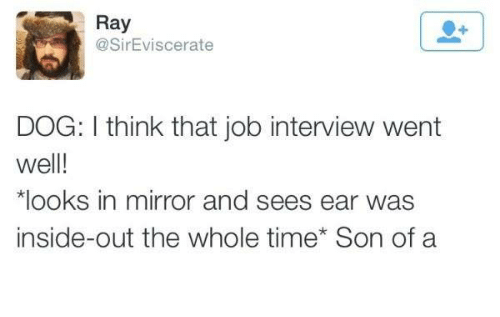 Dank, Inside Out, and Job Interview: Ray  @Sir Eviscerate  DOG: think that job interview went  well!  *looks in mirror and sees ear was  inside-out the whole time Son of a