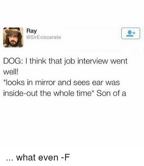 Dogs, Job Interview, and Relatable: Ray  @SirEviscerate  DOG: I think that job interview went  well!  *looks in mirror and sees ear was  inside-out the whole time' Son of a ... what even -F