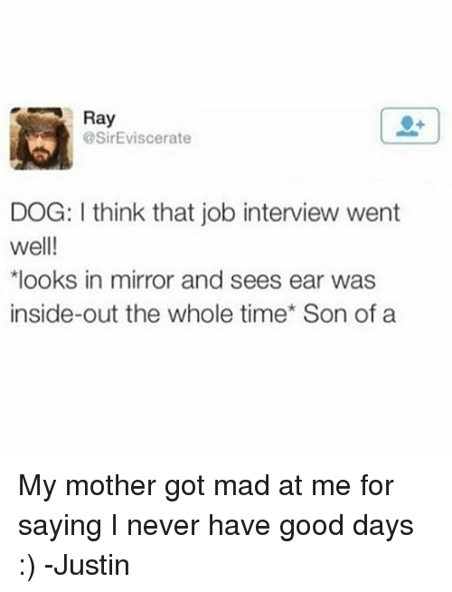 Job Interview, Memes, and 🤖: Ray  @SirEviscerate  DOG: think that job interview went  well!  *looks in mirror and sees ear was  inside-out the whole time Son of a My mother got mad at me for saying I never have good days :) -Justin