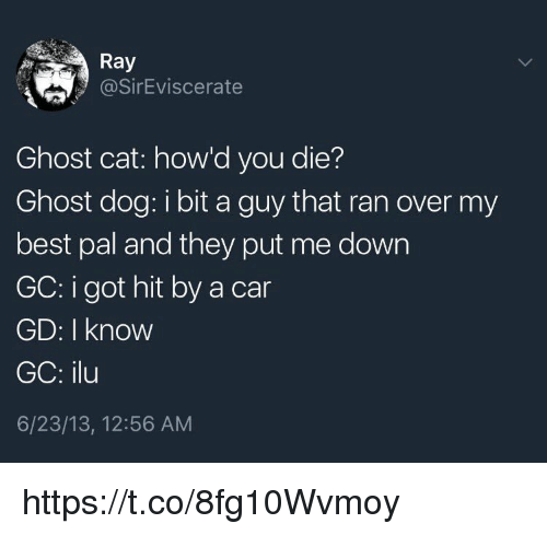 Memes, Best, and Ghost: Ray  @SirEviscerate  Ghost cat: how'd you die?  Ghost dog: i bit a guy that ran over my  best pal and they put me down  GC: i got hit by a car  GD: I know  GC: ilu  6/23/13, 12:56 AM https://t.co/8fg10Wvmoy